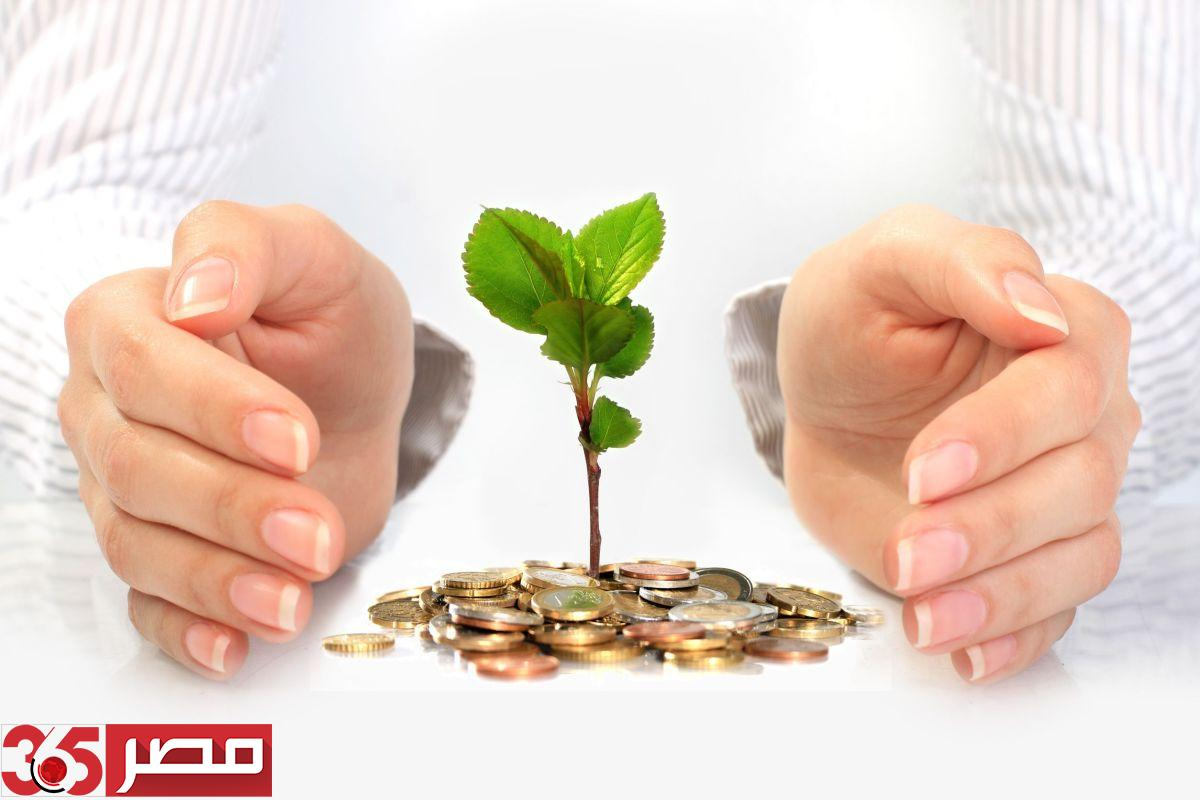 صورة 12 فكرة لمشروع مربح يبدأ بـ 16 ألف جنيه حتى 160 ألف جنيه